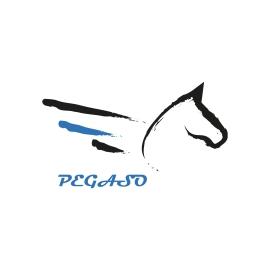 PEGASO (2019)